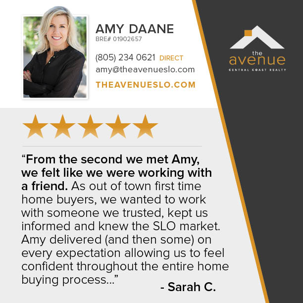 5-Star Review for Amy Daane