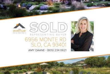 SOLD! Amy Daane