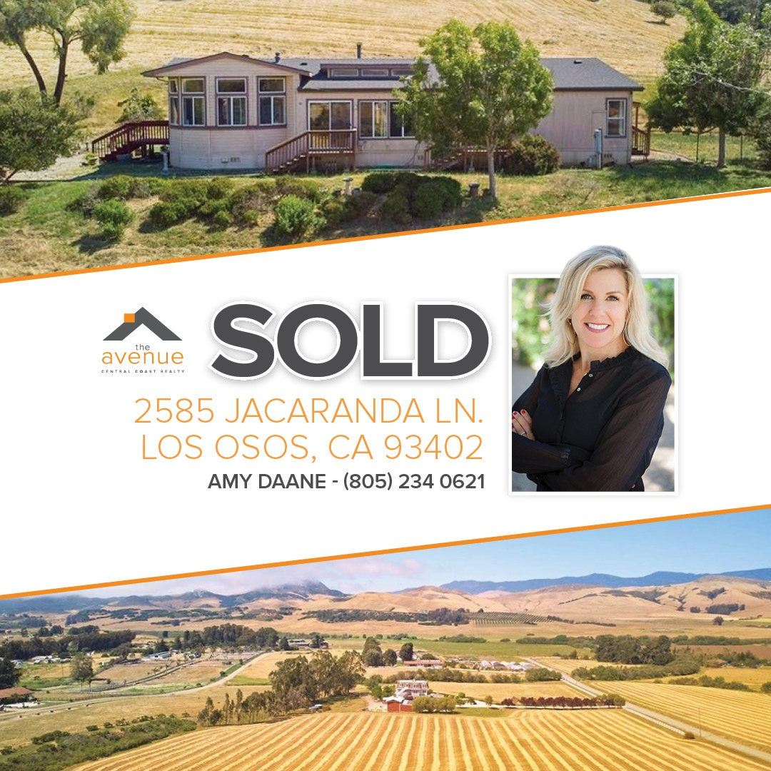 SOLD – Amy Daane