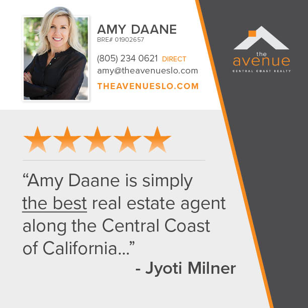 Testimonial for Amy Daane of the Avenue Central Coast Realty